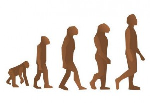 "Evolution is often absent when welfare to work programmes are ""refreshed""."